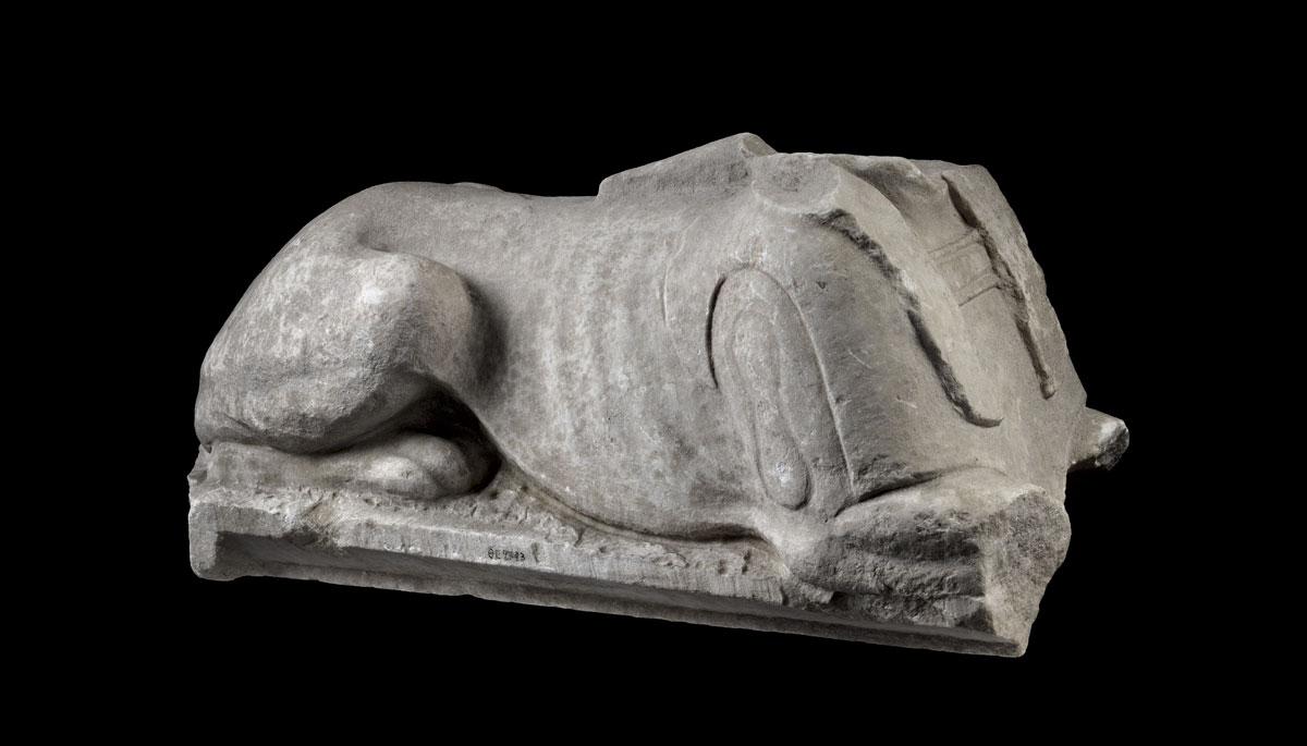Εικ. 2. Μαρμάρινο σώμα καθιστής σφίγγας, 1ος αι. π.Χ. (φωτ. ΛΒ᾽ ΕΠΚΑ).