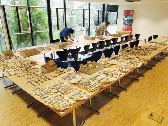 10.600 όστρακα, λίθινα τέχνεργα, λεπίδες οψιανού και πυριτόλιθου καθώς και οστεολογικό υλικό επέστρεψαν από τη Γερμανία στην Ελλάδα.