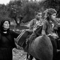 Ταξιδεύοντας στην Ελλάδα με τον Κωνσταντίνο Μάνο