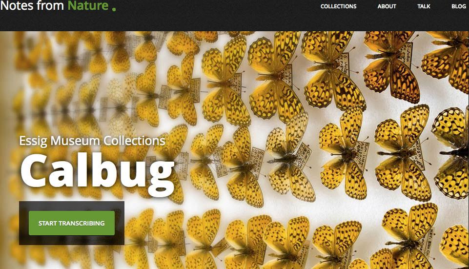 Εικ. 1. H αρχική σελίδα του ιστοτόπου του πρότζεκτ Calbug του Μουσείου Essig, (http://www.notesfromnature.org/#/archives/calbug), όπου το κοινό καλείται να βοηθήσει στη μεταγραφή πληροφοριών που περιλαμβάνονται σε φωτογραφίες, πινακίδες και βιβλία από τις συλλογές αρθροπόδων του Μουσείου.