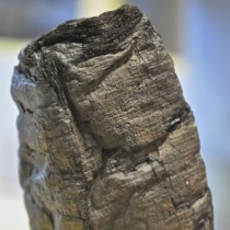 Αρχαίοι πάπυροι διαβάστηκαν για πρώτη φορά με ακτίνες Χ