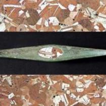 Η χαλκοτεχνία στην προϊστορική Ήπειρο