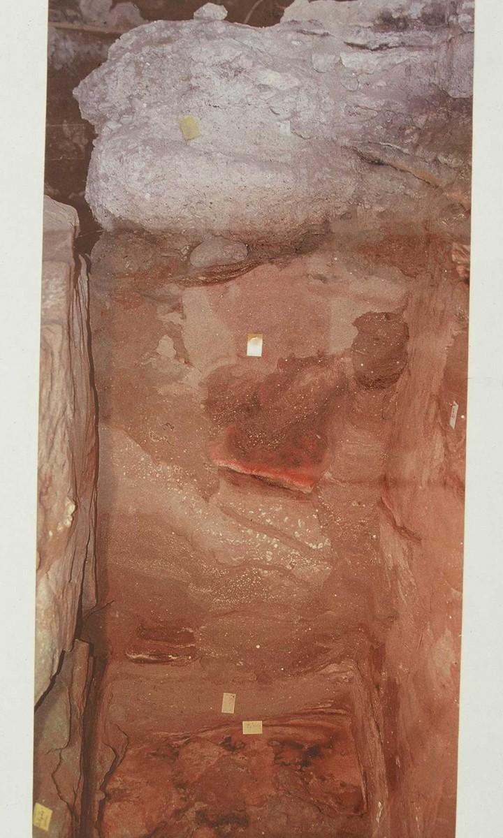 Εικ. 6. Αντιπροσωπευτική στρωματογραφία των επιχώσεων του σπηλαίου. Διακρίνεται η γκρίζα νεολιθική επίχωση επάνω, παρακάτω τα ανοιχτόχρωμα παγετωνικά ιζήματα με ενδιάμεσα βελτιωμένο κλίμα και εστία και οι μεσοπαλαιολιθικές επιχώσεις στο βαθύτερο τμήμα.