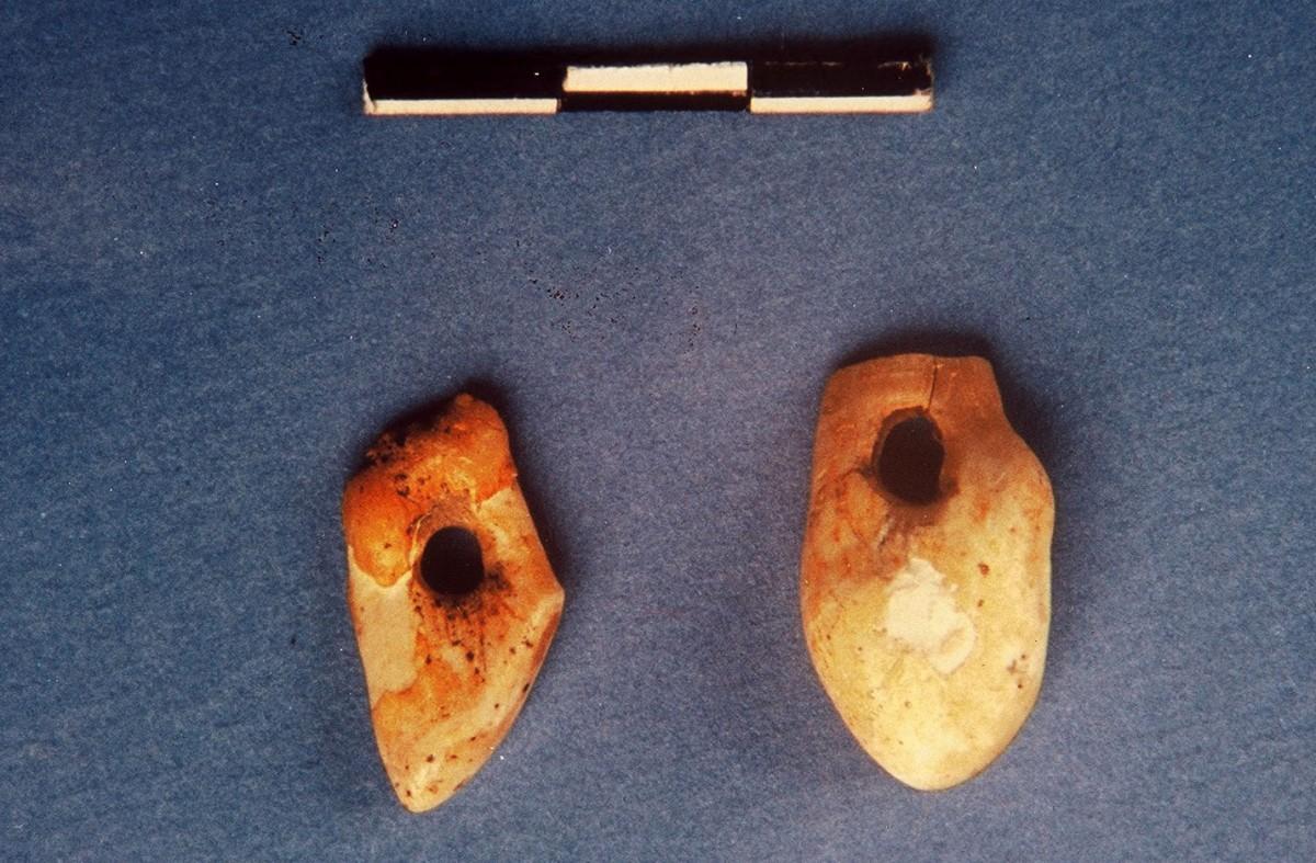 Εικ. 14. Δύο κυνόδοντες ελαφιού με διανοιγμένη οπή για ανάρτηση. Ανώτερης Παλαιολιθικής, μετά τον μέγιστο παγετώνα.