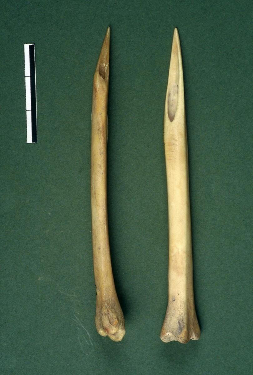 Εικ. 28. Δύο οστέινοι οπείς ακέραιοι, φτιαγμένοι από μακρά οστά μικρών ζώων.