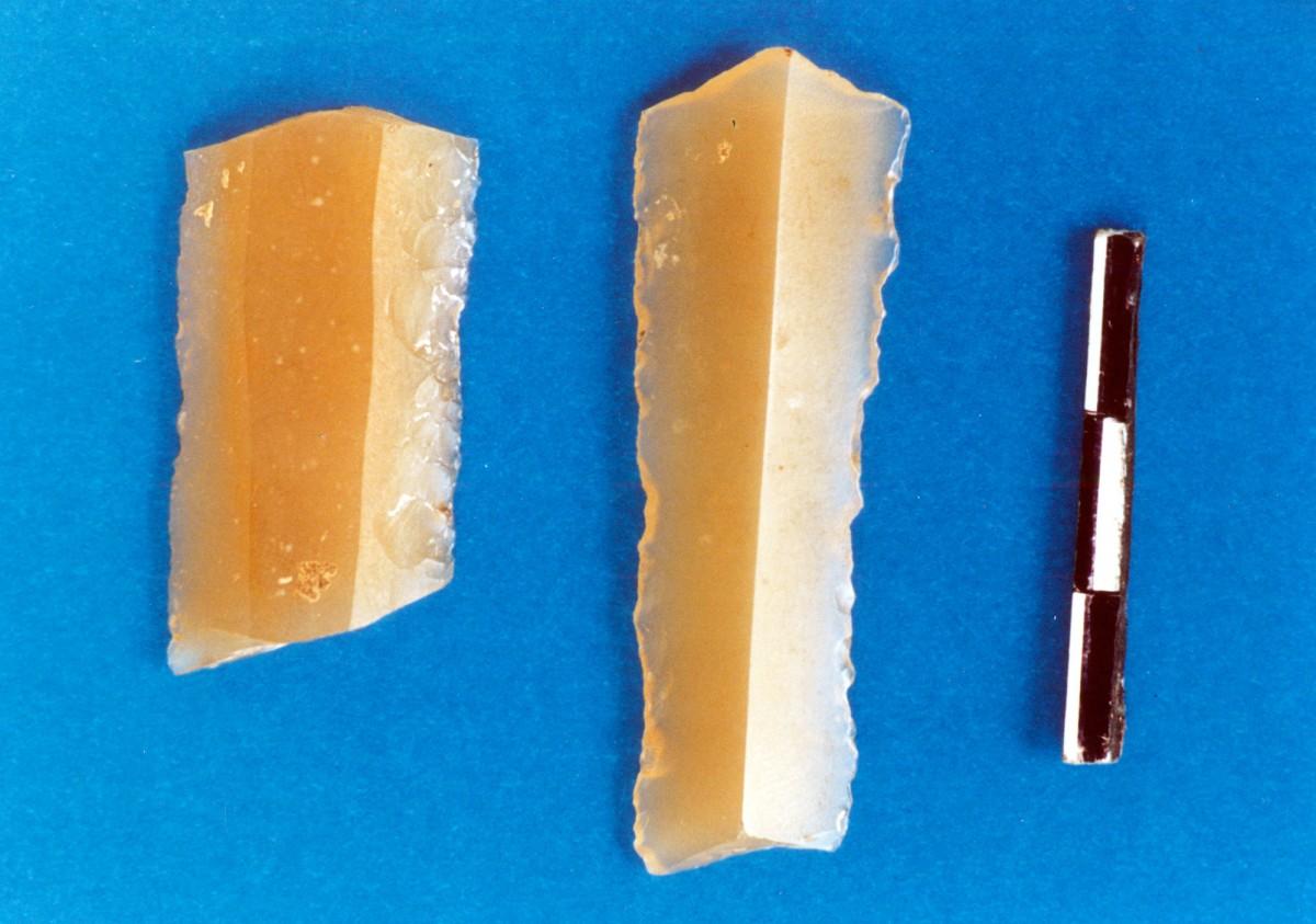Εικ. 34. Λεπίδες από μελί πυριτόλιθο, πιθανότατα εισηγμένο.