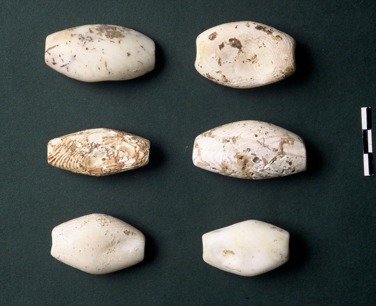Εικ. 43. Μεγάλες βαρελόσχημες χάντρες φτιαγμένες από όστρεο Spondylus gaederopus με καταγωγή από το Αιγαίο. Eίναι γνωστές από τα Βαλκάνια (κοιλάδα των Καρπαθίων), Νεότερη Νεολιθική (δική μας) περίοδος.