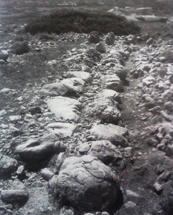 Εικ. 4. Γουρνιά: οχυρωματικός περίβολος στην παραλία του οικισμού.