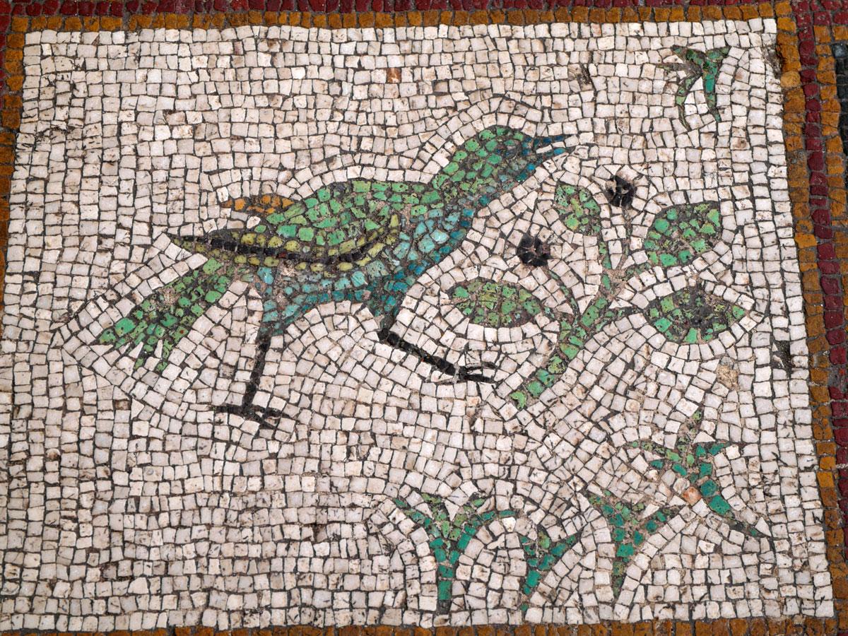 Εικ. 26. Άποψη ψηφιδωτού δαπέδου με πτηνά και φυτικά μοτίβα (λεπτομέρεια).