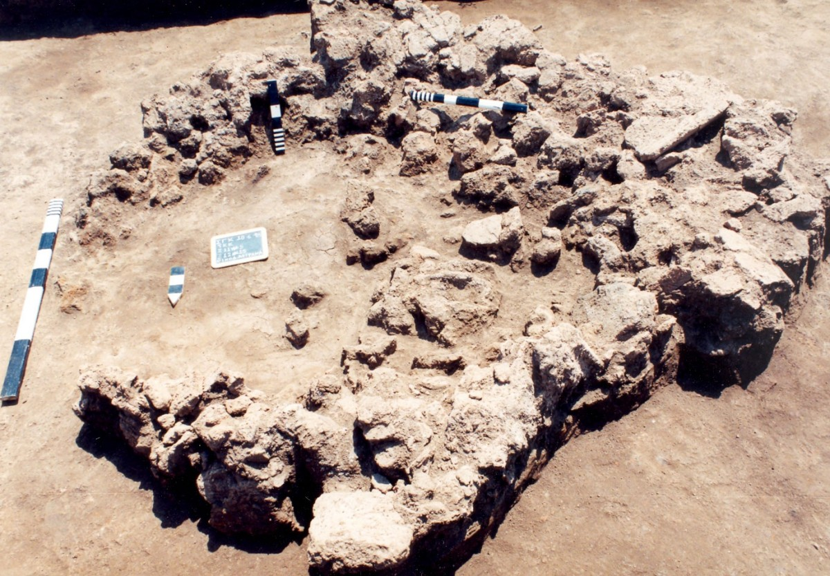Εικ. 7. Καμένα αρχιτεκτονικά κατάλοιπα που «απορρίφθηκαν» εντός μεγάλου λάκκου (αα 430), στα βορειοανατολικά όρια του νεολιθικού οικισμού της Τούμπας Κρεμαστής Κοιλάδας.