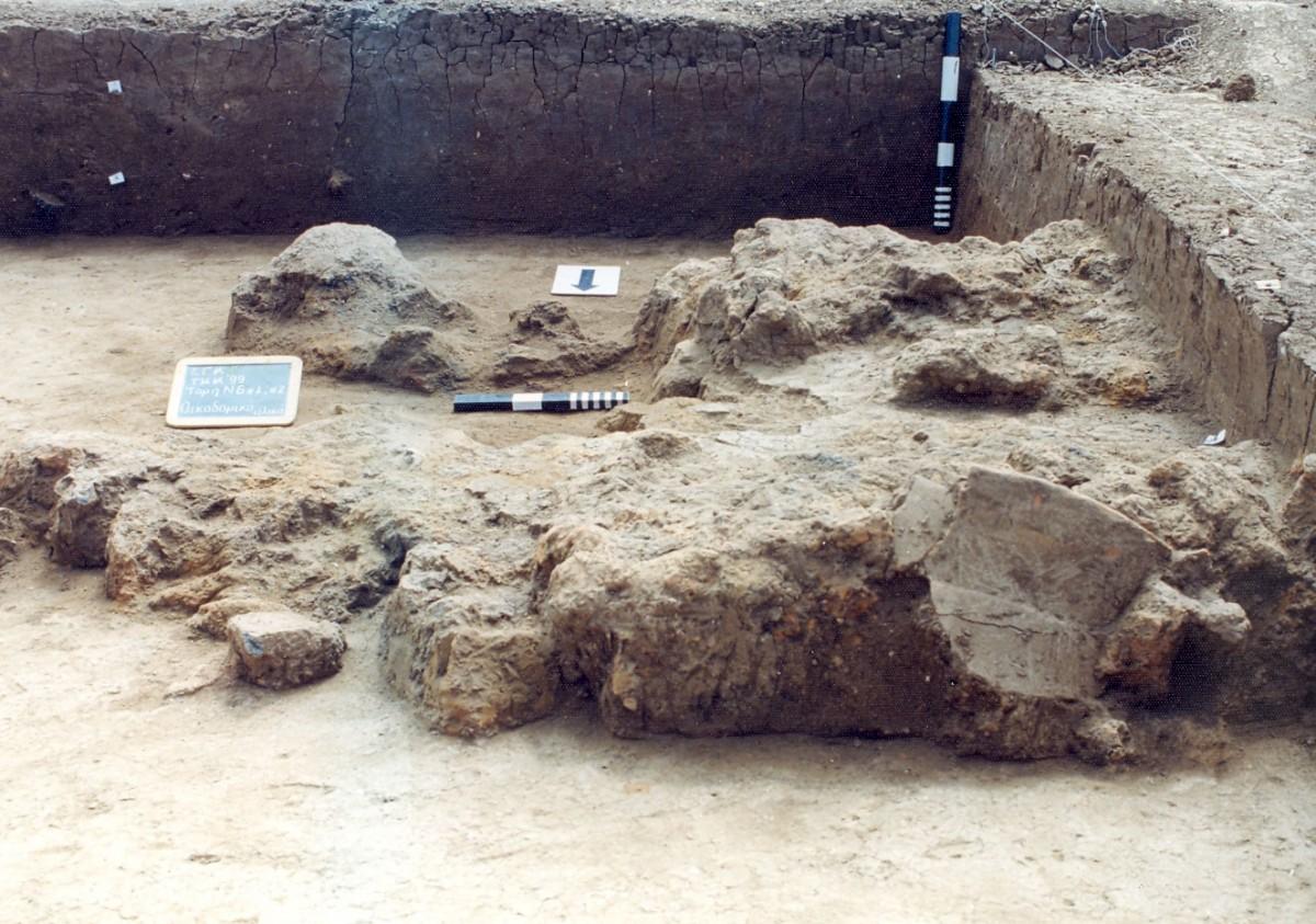 Εικ. 8. Καμένα αρχιτεκτονικά κατάλοιπα που «απορρίφθηκαν» εντός μικρού λάκκου (αα  424), στα βορειοανατολικά όρια του νεολιθικού οικισμού της Τούμπας Κρεμαστής Κοιλάδας.