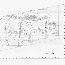 Ο νεολιθικός οικισμός της «Τούμπας Κρεμαστής Κοιλάδας» (Μέρος Γ')