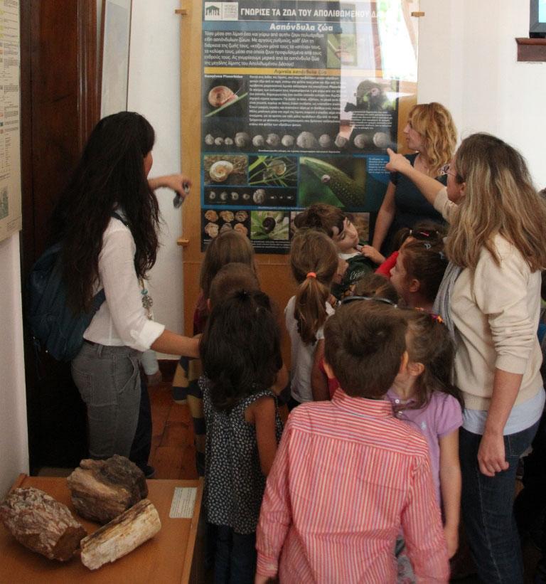 Oι μικροί μαθητές γίνονται για λίγο επιστήμονες και ανακαλύπτουν απολιθώματα των ζώων που ζούσαν στο Απολιθωμένο Δάσος.