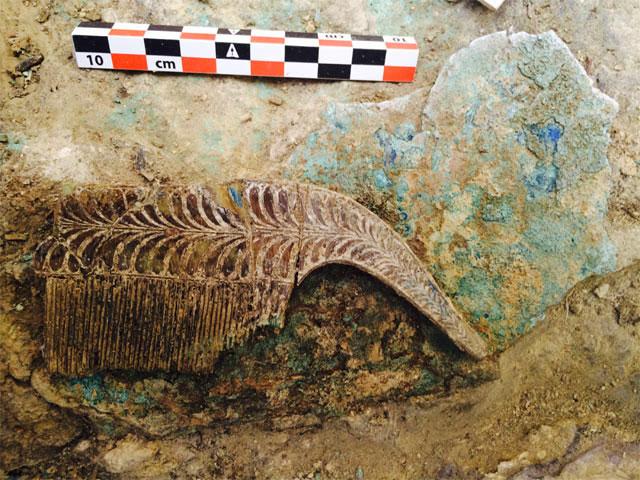 Ελεφαντοστέινο κτένι από τον τάφο στον Άνω Εγκλιανό (φωτ. ΥΠΠΟΑ).