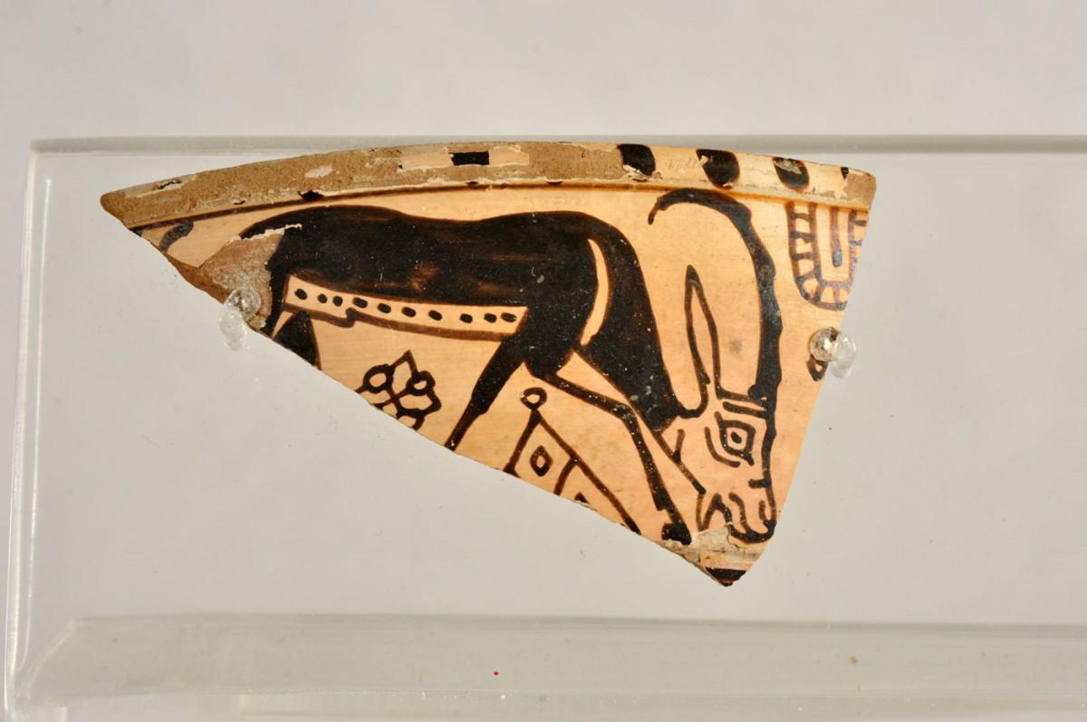 Εικ. 18. Όστρακο κύλικας του ρυθμού των Αιγάγρων. 630-600 π.Χ.