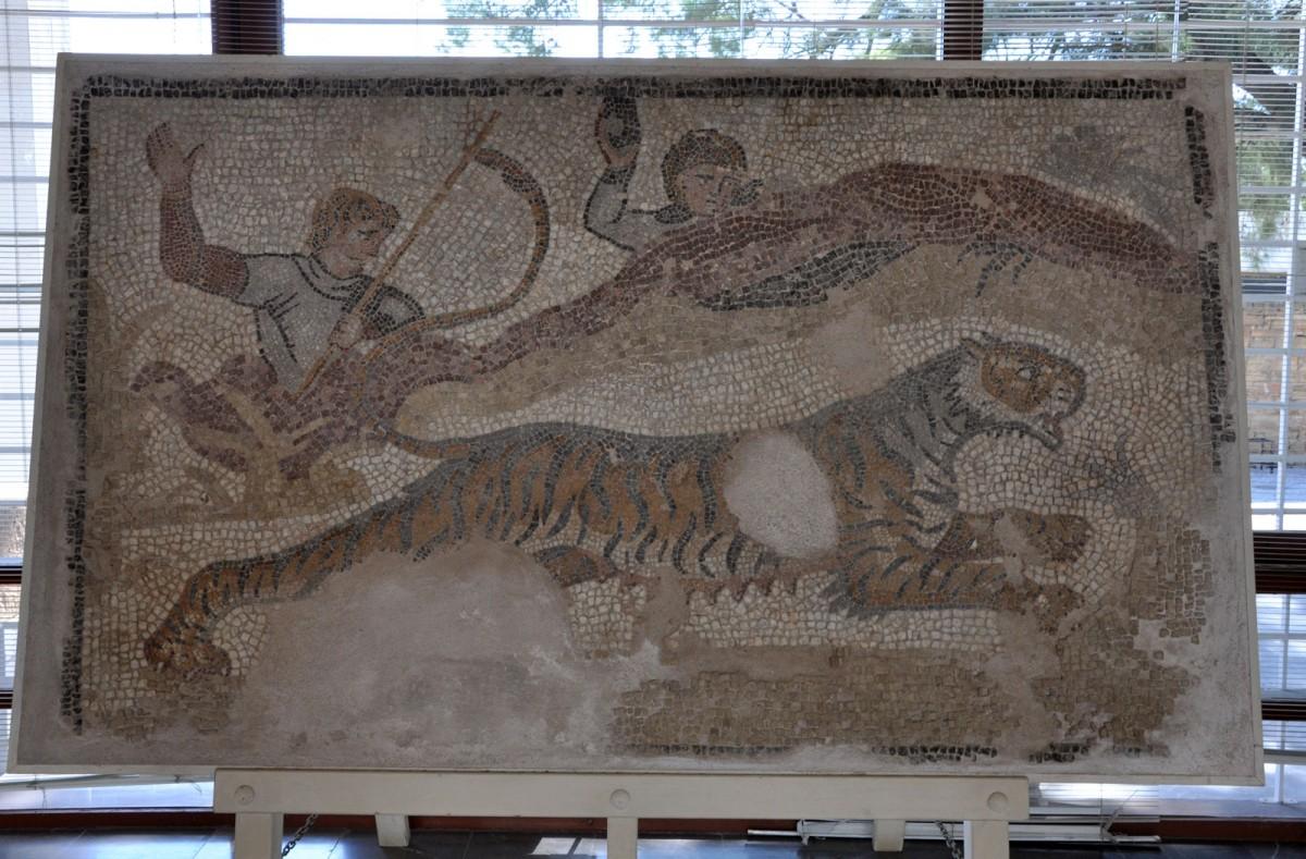 Εικ. 30. Τμήμα ψηφιδωτού δαπέδου με παράσταση κυνηγιού. Από το αίθριο δημοσίου κτιρίου των ύστερων ρωμαϊκών χρόνων. Πόλη της Χίου (Αγ. Ιάκωβος - οικόπεδο Παπαζή).