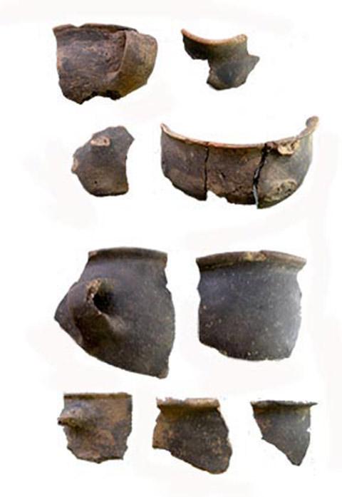 Εικ. 12. Δείγματα της καστανομέλανης εκδοχής της μονόχρωμης κεραμικής από τη Δωδώνη. (Πηγή: αρχείο συγγραφέα)