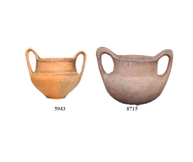 Εικ. 13. Αμαυρόχρωμοι κάνθαροι από τα Κάτω Πεδινά (ΑΜΙ 5943) και την Κάτω Κόνιτσα (ΑΜΙ 8715). (Πηγή: αρχείο συγγραφέα)