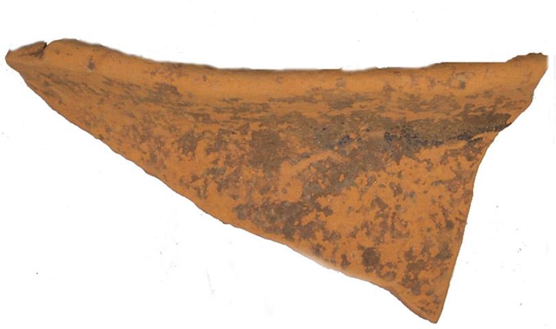 Εικ. 8. Όστρακο με μελανή στιλπνή διακόσμηση από το Λιατοβούνι. (Πηγή: αρχείο συγγραφέα)
