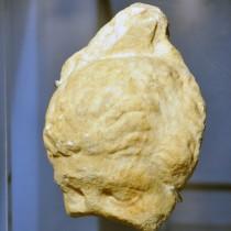 Η ανατίναξη του Παρθενώνα και άλλες ιστορίες της άγνωστης Αθήνας