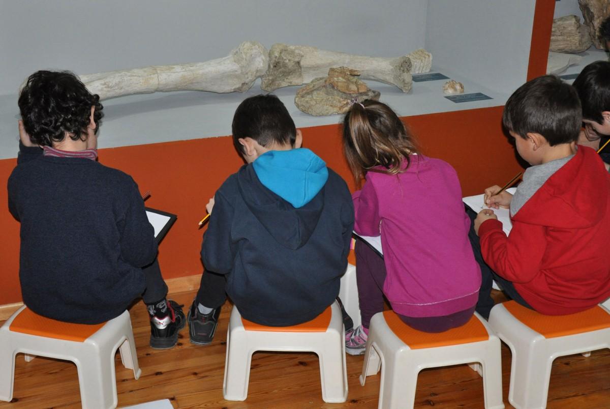 Τα εκπαιδευτικά προγράμματα περιλαμβάνουν τη γνωριμία των παιδιών με τα ζώα που έζησαν στην Ελλάδα στο γεωλογικό παρελθόν.