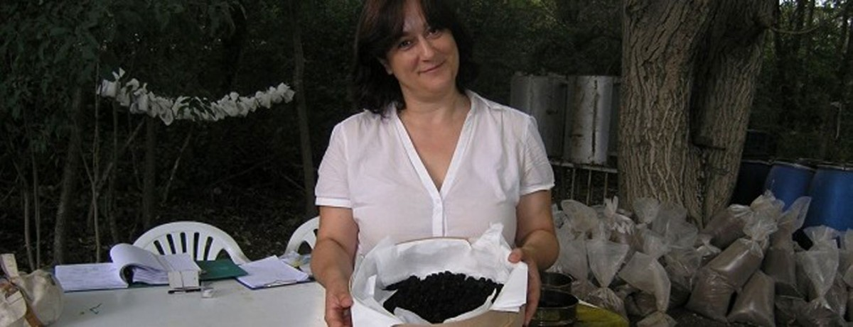 Tάνια Βαλαμώτη: «Γνωρίζοντας ποια είναι τα είδη των τροφών, θα δούμε τις διάφορες αποχρώσεις της κουζίνας, σε βάθος χρόνου, σε μία περιοχή από το Αιγαίο ως την Κεντρική Ευρώπη, καθώς και τη μεθοδολογία, τις μαγειρικές πρακτικές και τον εξοπλισμό που χρησιμοποιούσαν για να παρασκευάσουν το φαγητό».