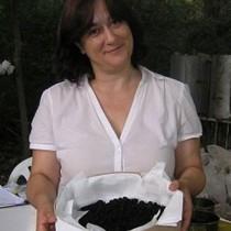 Νεολιθικές συνταγές από το Αιγαίο μέχρι την Κεντρική Ευρώπη