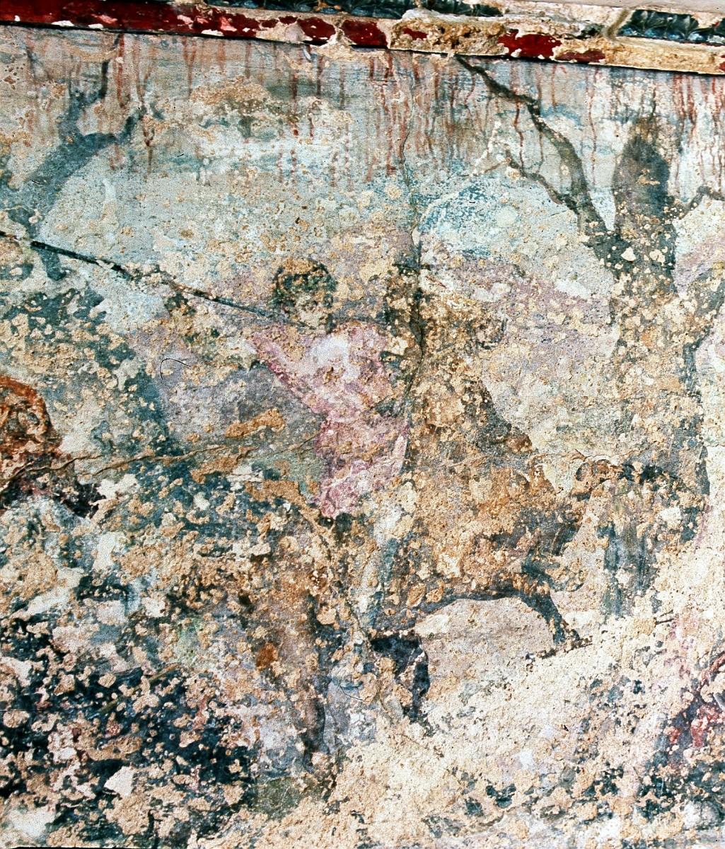 Εικ. 10. Μέγας Αλέξανδρος από την τοιχογραφία με το κυνήγι. Βεργίνα, Τάφος II.