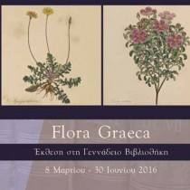 Flora Graeca