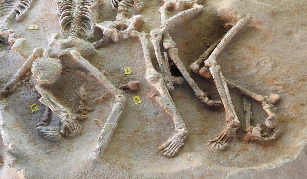 Λεπτομέρεια ομαδικής ταφής ατόμων που έχουν υποστεί βίαιο θάνατο. Διακρίνεται το αγγείο που αναμένεται να χρονολογήσει με ακρίβεια την ταφή (φωτ. ΑΠΕ-ΜΠΕ).