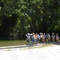 Το Μουσείο Μπενάκη στον Εθνικό Κήπο