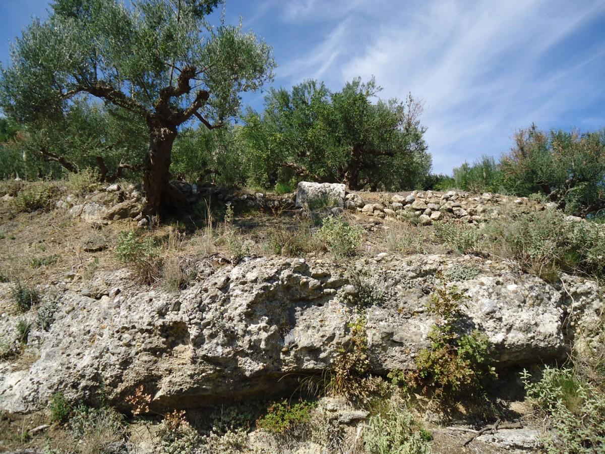 Εικ. 5. «Ελληνικά» Θουρίας. Ιδιοκτησία Ν. Κρίκκα. Στρώση βράχων επάνω από τον πεσμένο λαξευμένο βραχόλιθο.