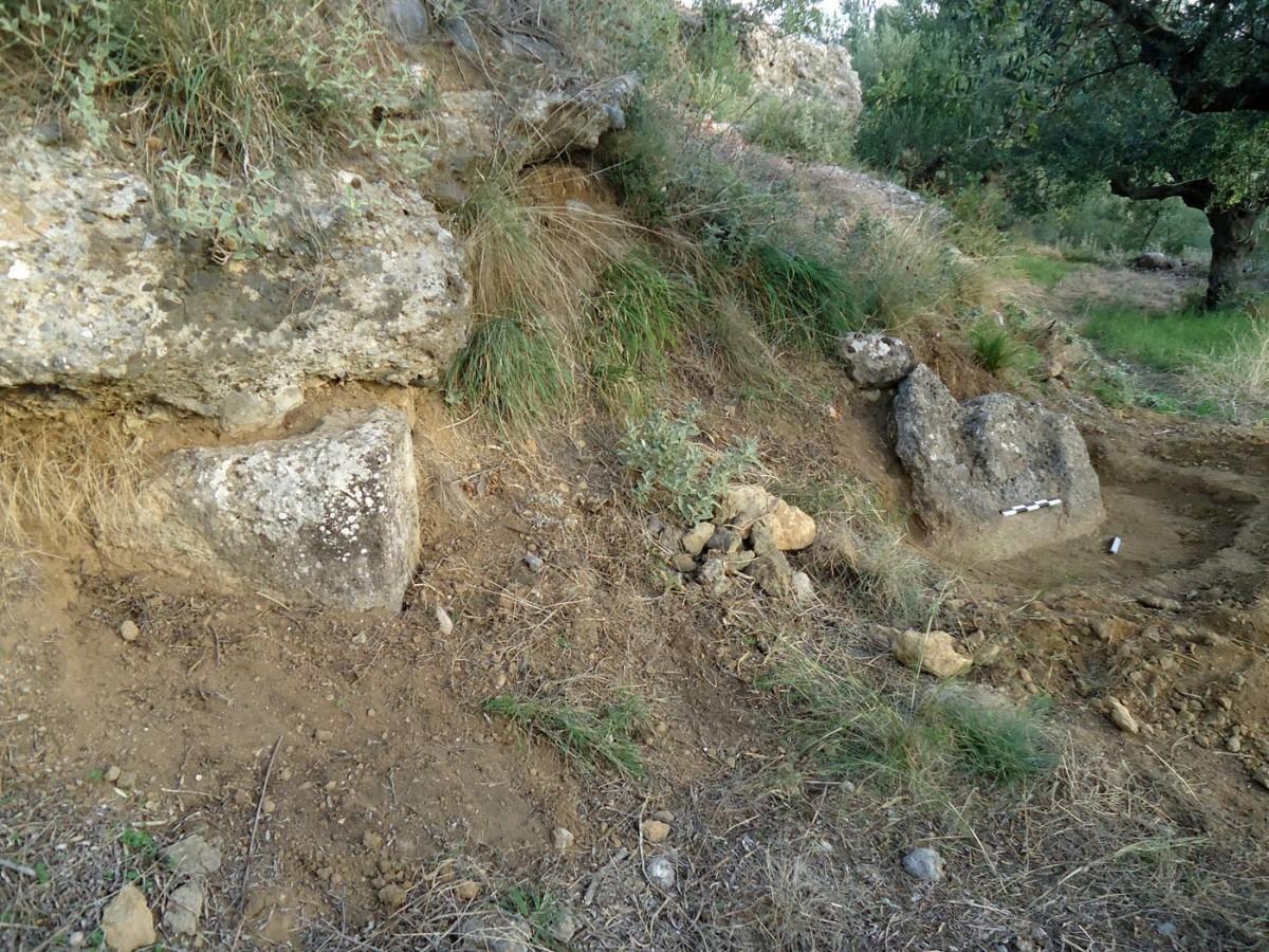 Εικ. 6. «Ελληνικά» Θουρίας. Ιδιοκτησία Ν. Κρίκκα. Ο λαξευμένος φυσικός βράχος ελαιοτριβείου. Στο άκρο αριστερά διακρίνεται μέρος του ισοδομικού τοίχου αρχαίου κτιρίου.