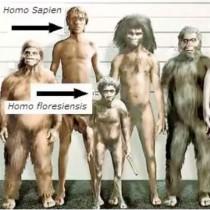 Ανακαλύφθηκαν οι πρόγονοι των «Χόμπιτ» της Ινδονησίας