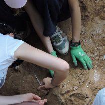 Νέες ανασκαφές στη… «ζούγκλα» της Εύβοιας