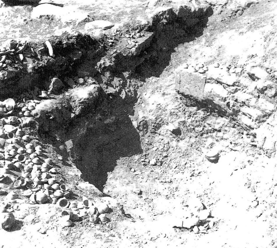 Εικ. 2. Η «κουλούρα» στην «Οικία Έψιλον» Μαλίων κατά την ανασκαφή (Bradfer-Burdet 2005, pl. Xa).