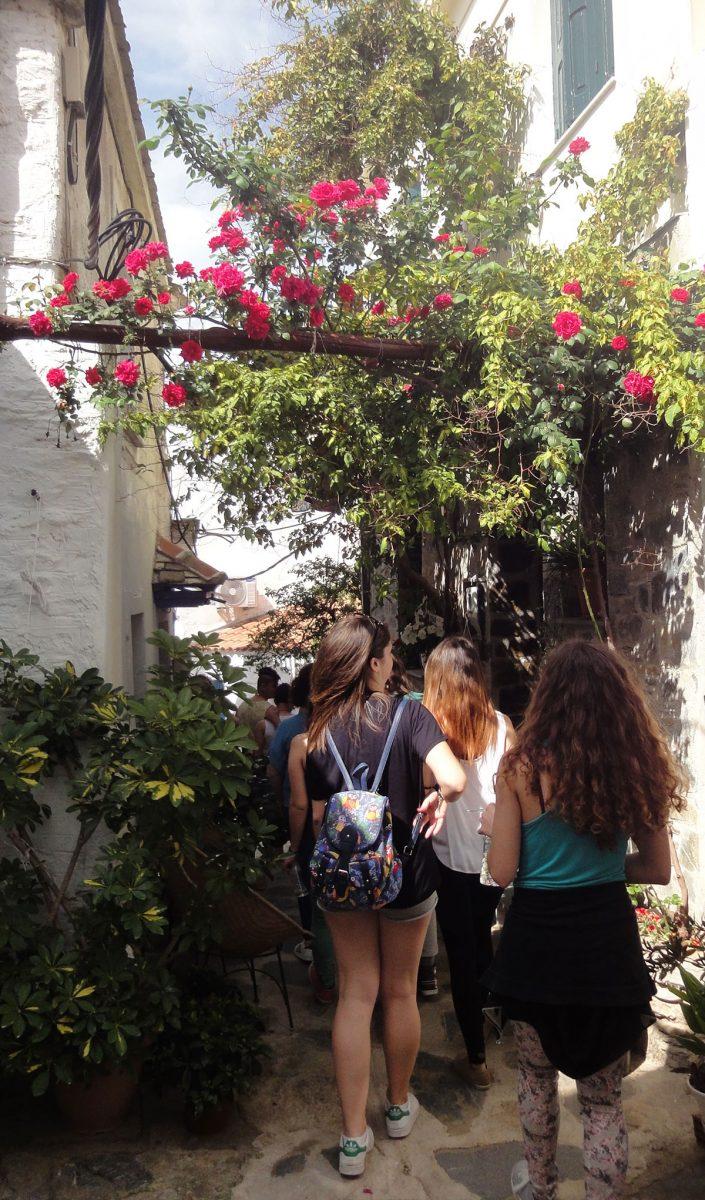 Εικ. 7. Περπατώντας στα δρομάκια της Σκοπέλου.