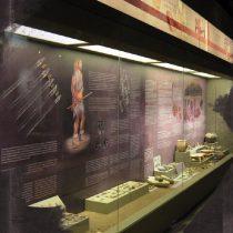 Μουσείο Σπηλαίου Θεόπετρας: «Σκηνικό» συνέχειας της ζωής και της εξέλιξης του ανθρώπου
