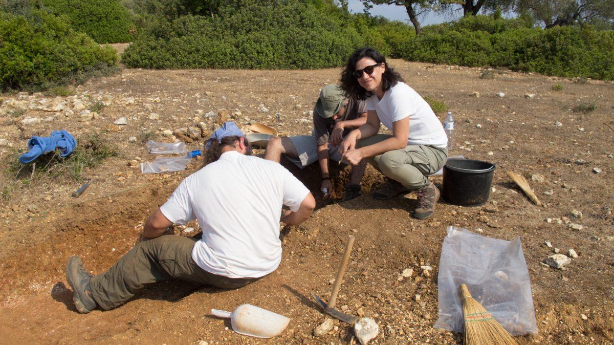 Εικ. 5. Δοκιμαστική ανασκαφή στο νότιο Μεγανήσι το καλοκαίρι του 2013.