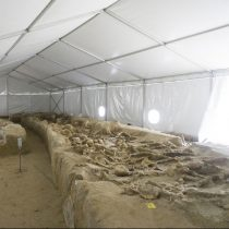 Ένα μουσείο για τους «δεσμώτες» του Φαληρικού Δέλτα