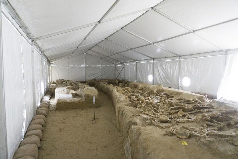Οι «δεσμώτες» του Φαληρικού Δέλτα προστατευμένοι, κάτω από κέλυφος στο ΚΠΙΣΝ.