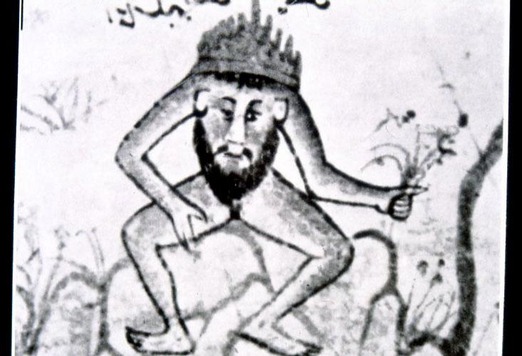Εικ. 23. Στηθοκέφαλος σε χάρτη του Τούρκου χαλκογράφου Piri Reis, 1513.