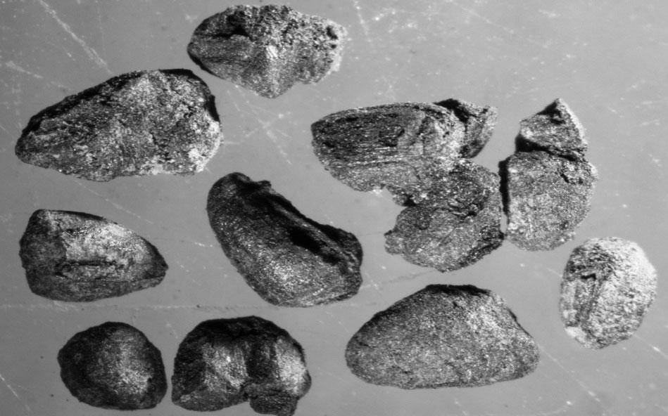 Θραύσματα δημητριακών από το Αρχοντικό, Πρώιμη Εποχή του Χαλκού.