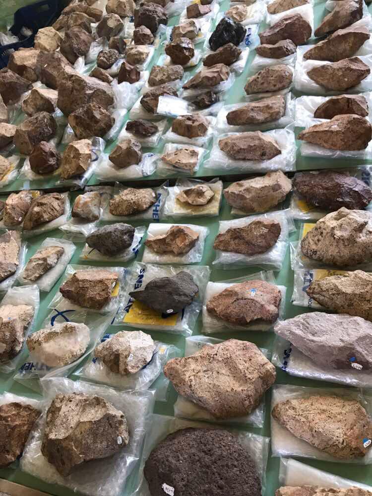 Λισβόρι: Οι ερευνητές αποκάλυψαν μεγάλο αριθμό παλαιολιθικών ευρημάτων που άφησαν πίσω τους προϊστορικές κοινότητες που έζησαν στη Λέσβο πριν από μισό εκατομμύριο χρόνια.