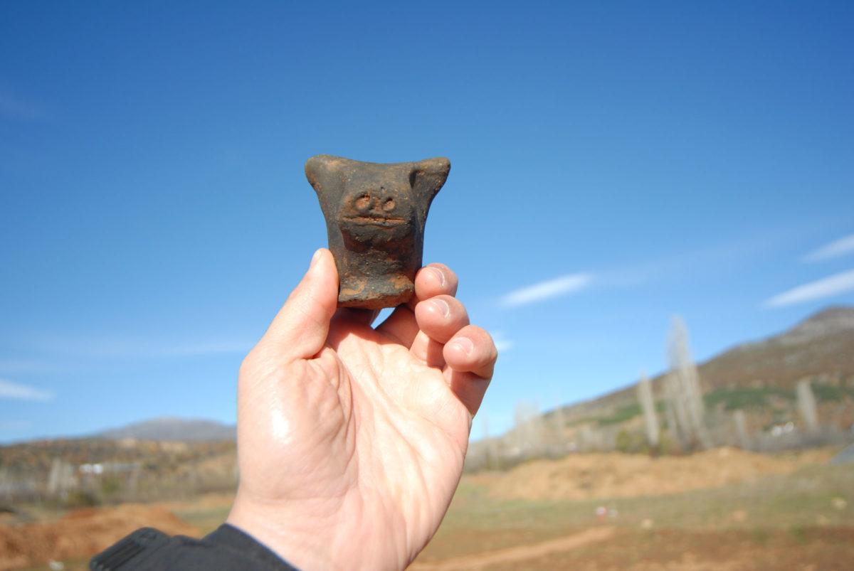 Εικ. 8. Τρίτα Κορομηλιάς: κεφάλι πήλινου ειδωλίου βοοειδούς.