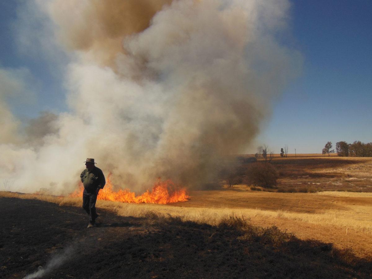 Αυστραλοί Αβορίγινες επιτηρούν τη φωτιά που σκόπιμα άναψαν και χρησιμοποιούν για την πρόσκτηση των φυσικών πόρων της επικράτειάς τους (φωτ.: ΑΠΕ-ΜΠΕ).