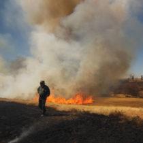Συνθέτοντας το παζλ της κατάκτησης της φωτιάς από τον άνθρωπο