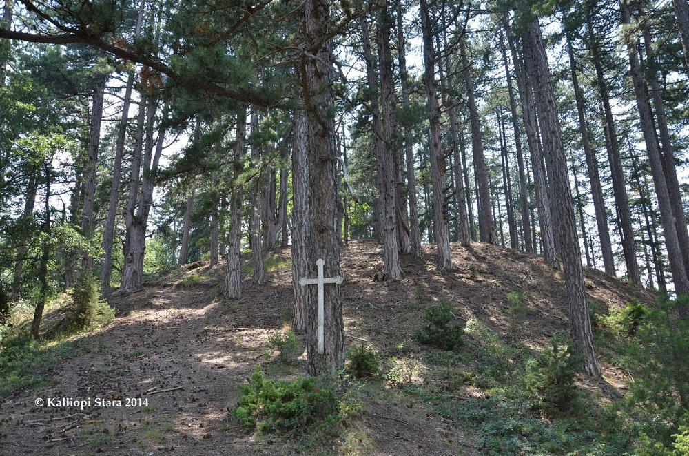 Σταυρός σε δέντρο ιερού δάσους (φωτ.: Καλλιόπη Στάρα).