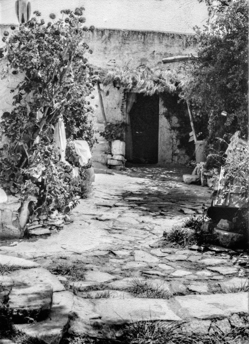 Εικ. 44. Η πλακόστρωση στον εξωτερικό χώρο, με άποψη των κτισμάτων και της φύτευσης σκίασης. © Αρχείο Δημήτρη Μωραΐτη (1980).