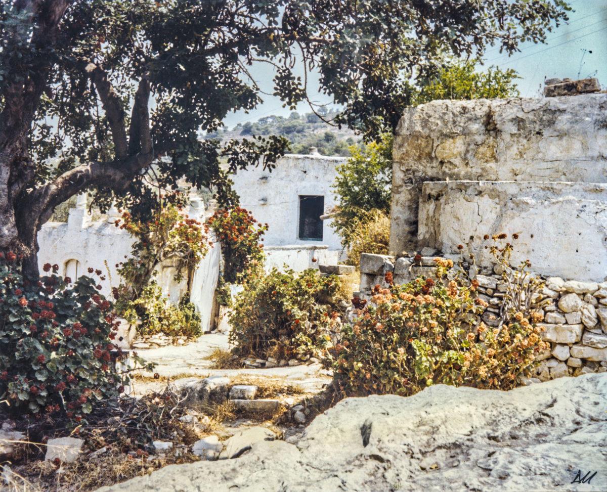 Εικ. 42. Ο εξωτερικός χώρος, με άποψη των κτισμάτων. © Αρχείο Δημήτρη Μωραΐτη (1980).